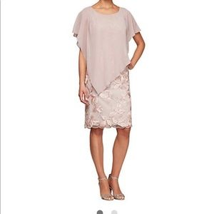 Alex Evenings blush chiffon mother of bride gown